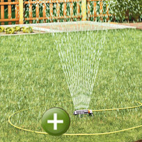 Watering the garden with rainwater